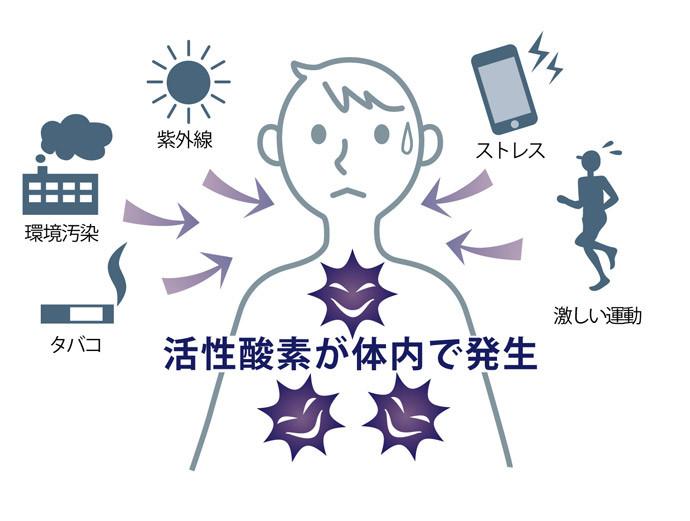 眠気の原因3:活性酸素