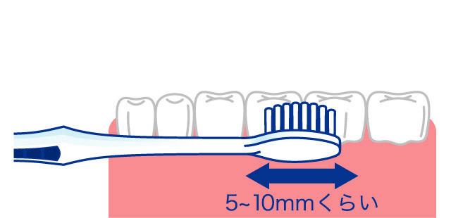 正しい歯の磨き方3