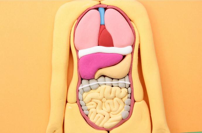 一日の疲れが取れないのは6つのNG習慣6:肝臓に負担がかかっている