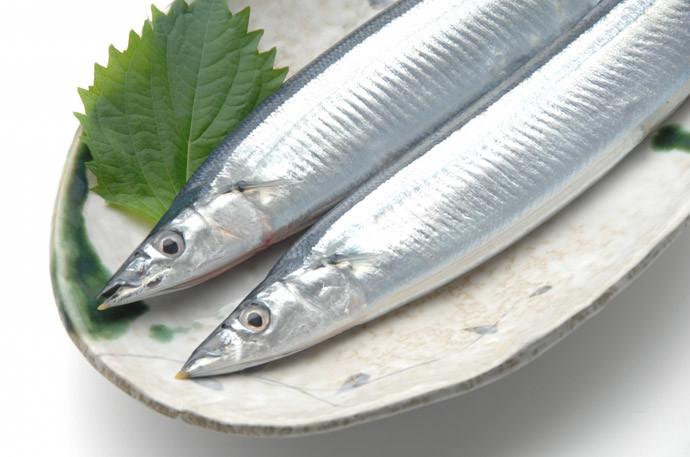 魚にも体が冷える・温かくなるものがある!