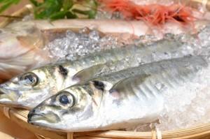 【魚は栄養の宝物庫!】魚を食べる驚きの効果まとめ