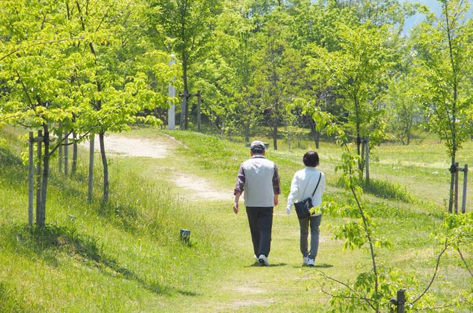 脳を刺激する方法5:懐かしい場所を訪れる