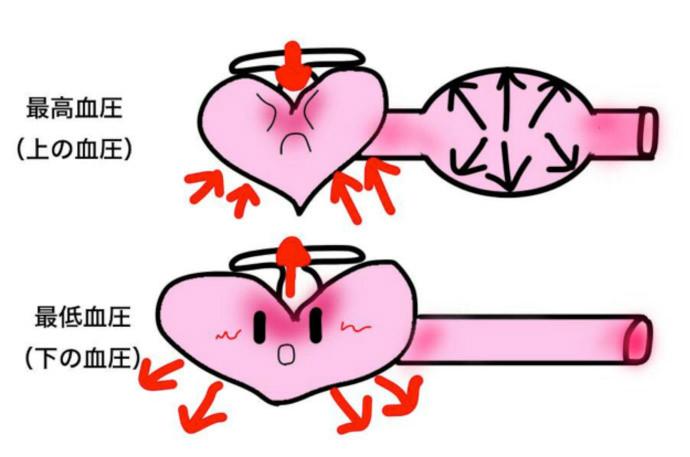 血圧とは?詳しく分かりやすく解説!