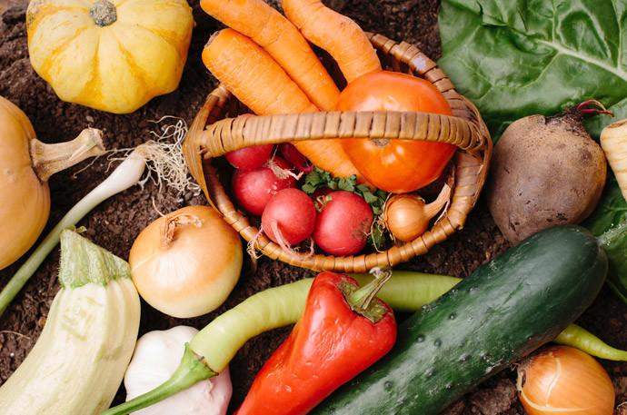 体が冷える野菜・温かくなる野菜