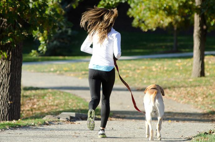 犬と仲良くする方法9.一緒の時間をたくさん共有する