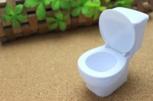 トイレは想像以上に汚い!ふたを閉めずに起こる悪影響3選