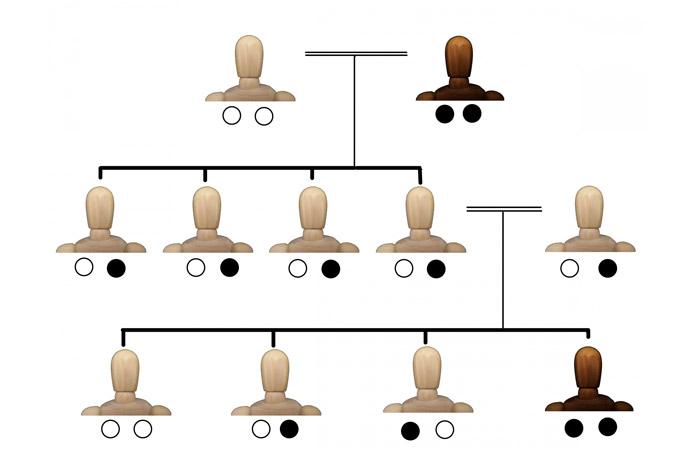 ワキガが子どもに遺伝する確率